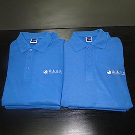 Polo shirt A3 футболка принтері WER-E2000T басып шығару үлгісін таңдады