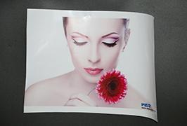 Self-Adhesive Vinyl принтері 3.2m (10 фут) эко-еріткіш принтері WER-ES3202 4